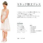 Dress Option 3 PPT copy