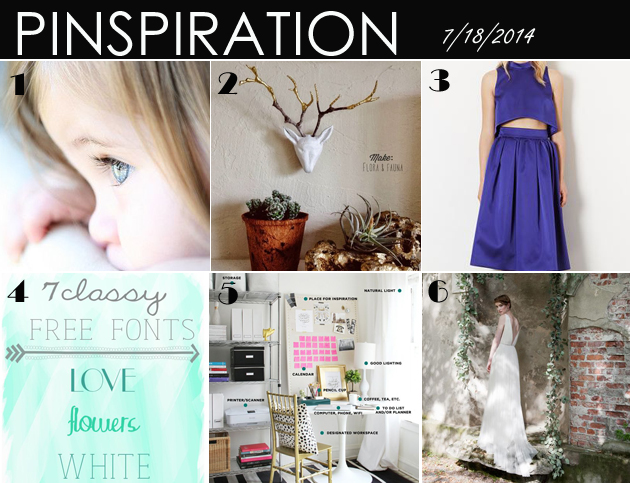 July Pinspiration Vivat Veritas Blog