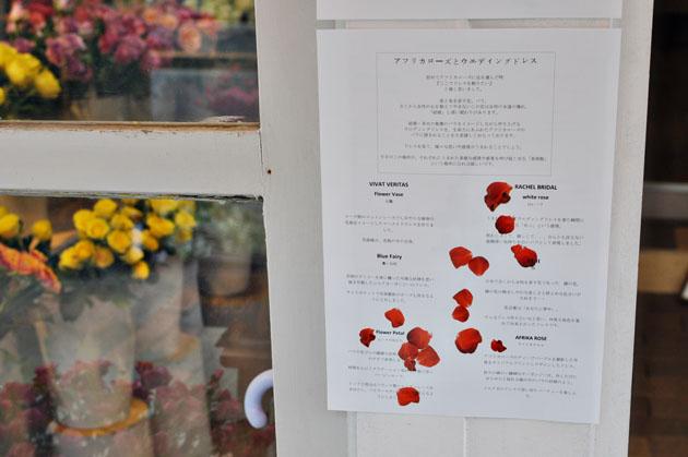 rose museum wedding box flyer2